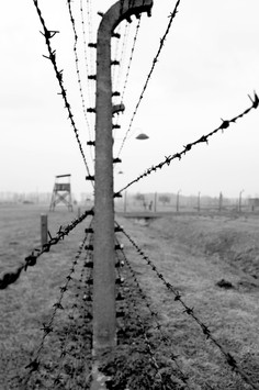 Wire and Rail.jpg