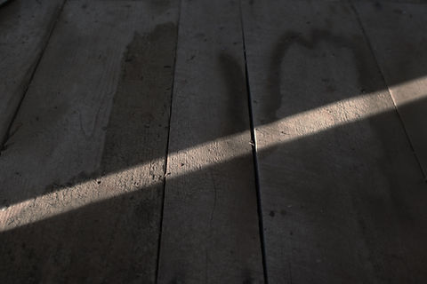 sunlight2.jpg