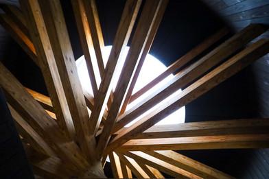 Wooden Web.jpg