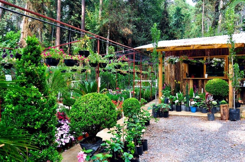 Jardin Vivero La Esperanza