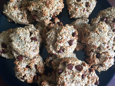 Flourless Chocolate Chip Hemp Cookies