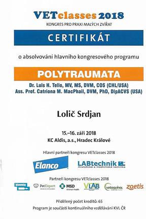 Srdjan Lolic - Certificate (4).jpg