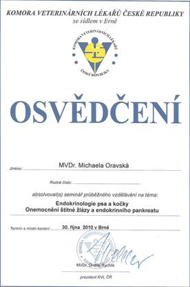 Michaela Oravska Certificate (10).jpg