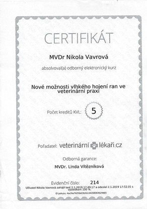 Nikola Vavrova - Certificate (1).jpg