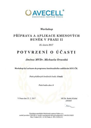 Michaela Oravska Certificate (26).jpg