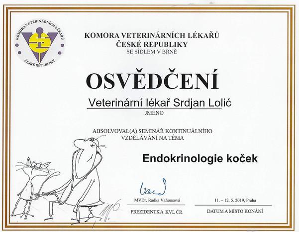 Srdjan Lolic - Certificate (1).jpg