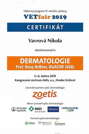 Nikola Vavrova - Certificate (9).jpg