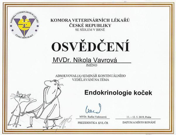 Nikola Vavrova - Certificate (4).jpg