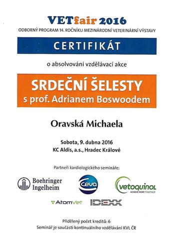 Michaela Oravska Certificate (29).jpg