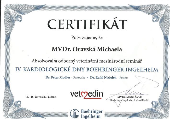 Michaela Oravska Certificate (8).jpg