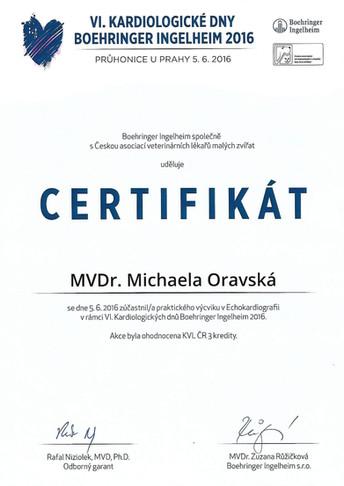 Michaela Oravska Certificate (33).jpg