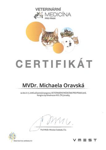 Michaela Oravska Certificate (30).jpg