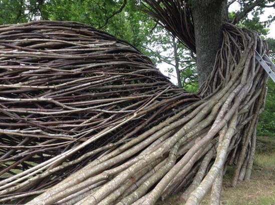 WILL BECKERS - Nature's Memory 14