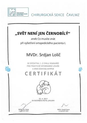 Srdjan Lolic - Certificate (2).jpg