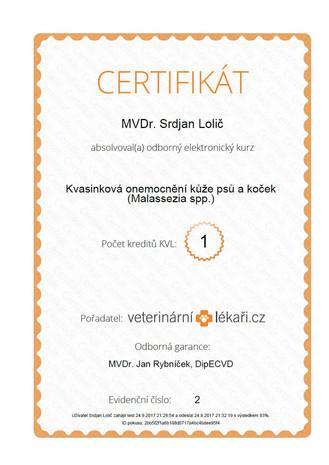 Srdjan Lolic - Certificate (3).jpg