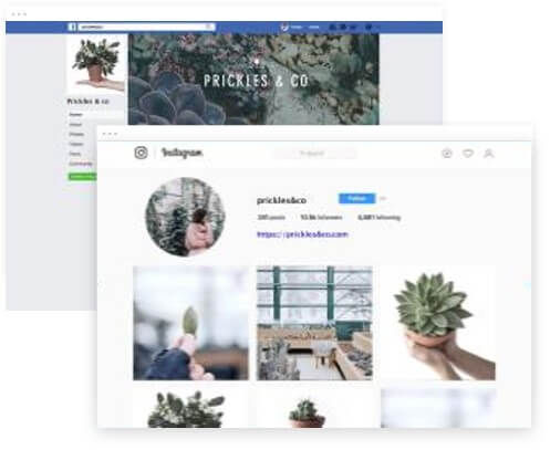 WEBSTYLE X Web Design studio - Social Posts.jpg
