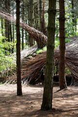 WILL BECKERS - The Willowman 09