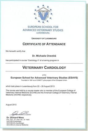 Michaela Oravska Certificate (20).jpg