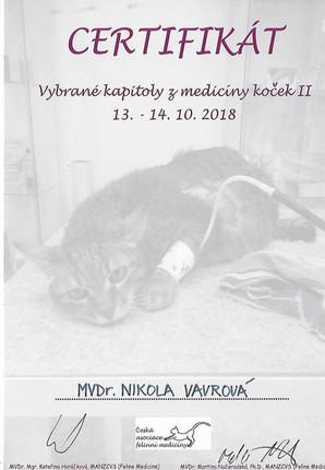 Nikola Vavrova - Certificate (8).jpg
