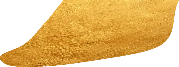 Tradix Golden leave 2_edited.png