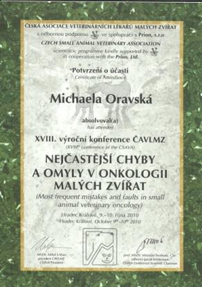 Michaela Oravska Certificate (11).jpg