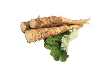Greater Burdock, root