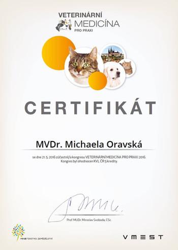 Michaela Oravska Certificate (3).jpg
