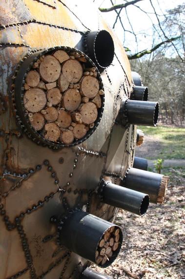 WILL BECKERS -  Forest Follies 15