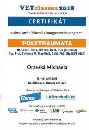 Michaela Oravska Certificate (22).jpg