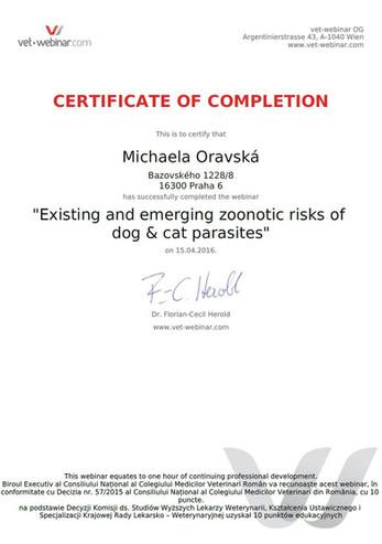Michaela Oravska Certificate (2).jpg