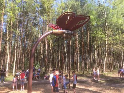 WILL BECKERS -  Forest Follies 06