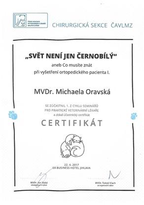 Michaela Oravska Certificate (25).jpg