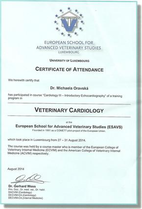 Michaela Oravska Certificate (21).jpg