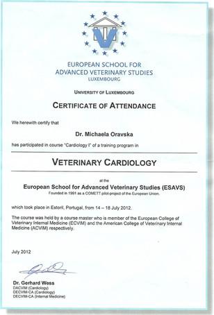 Michaela Oravska Certificate (19).jpg