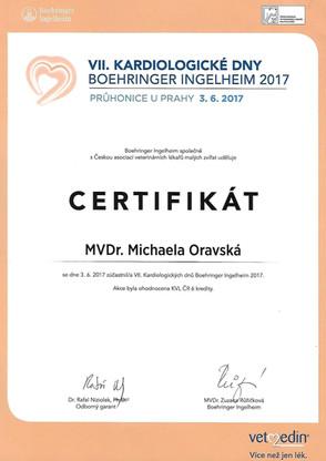 Michaela Oravska Certificate (32).jpg
