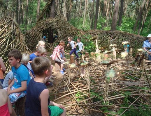 WILL BECKERS -  Forest Follies 11