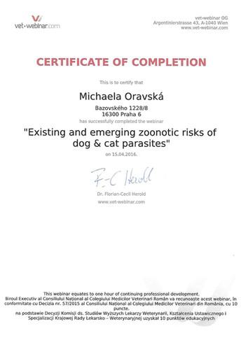 Michaela Oravska Certificate (31).jpg