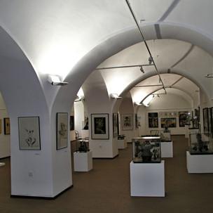 Fasáda a rekonstrukce budovy Galerie Slo