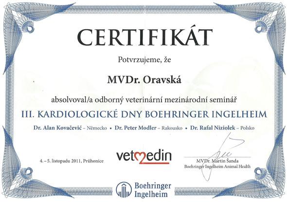 Michaela Oravska Certificate (9).jpg