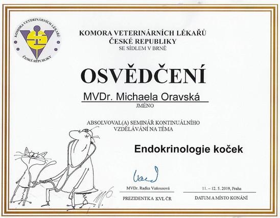 Michaela Oravska Certificate (23).jpg