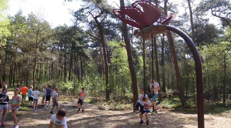 WILL BECKERS -  Forest Follies 08