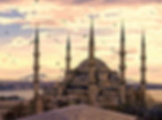 seagulls-in-istanbul-background-49402.jp