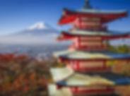 Tokio-HD-600x399.jpg