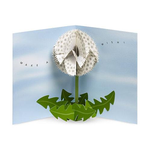 Dandelion Wishes, Pop Up Notecards