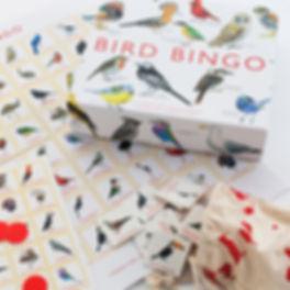 BirdBingo2-1000x1000.jpg