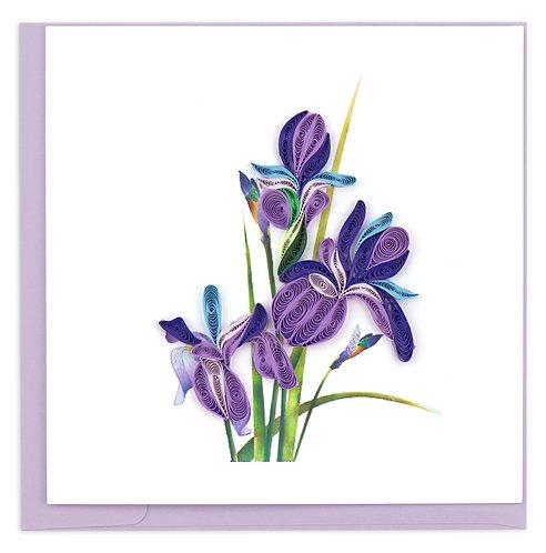 Quilling Card, Iris