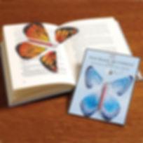 Flying Butterfly.jpg