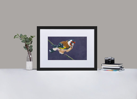 Goldfinch Framed Print with Mount