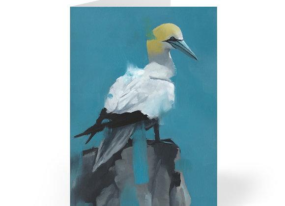 Gannet Cards (8pcs)