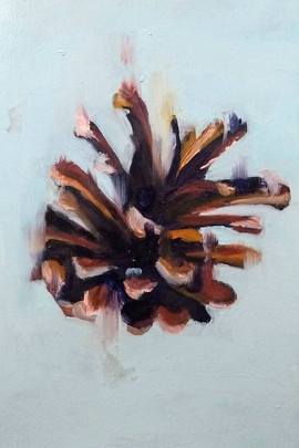 Study of a Falling Pinecone
